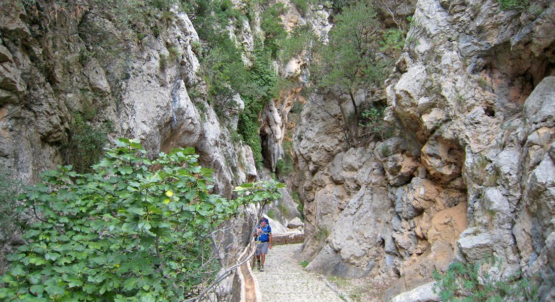 Serratramuntana | Wandern auf Mallorca | Bild Felsenschlucht